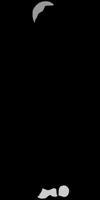 Calcium et Os